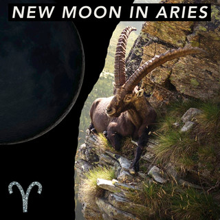 New Moon in Aries - Courage Through Crisis ✊🏻