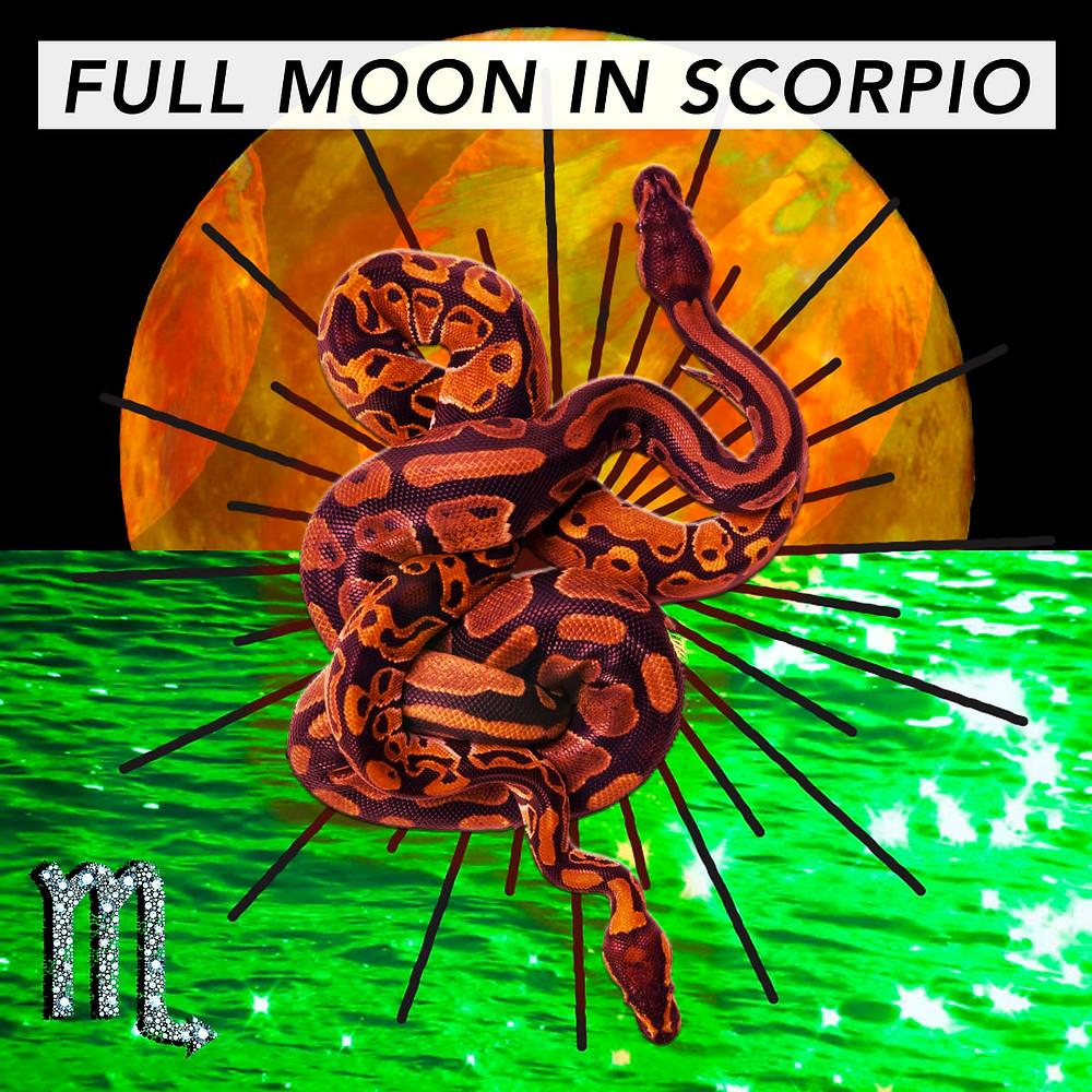 Full Moon in Scorpio 2018 - Energetic Principles