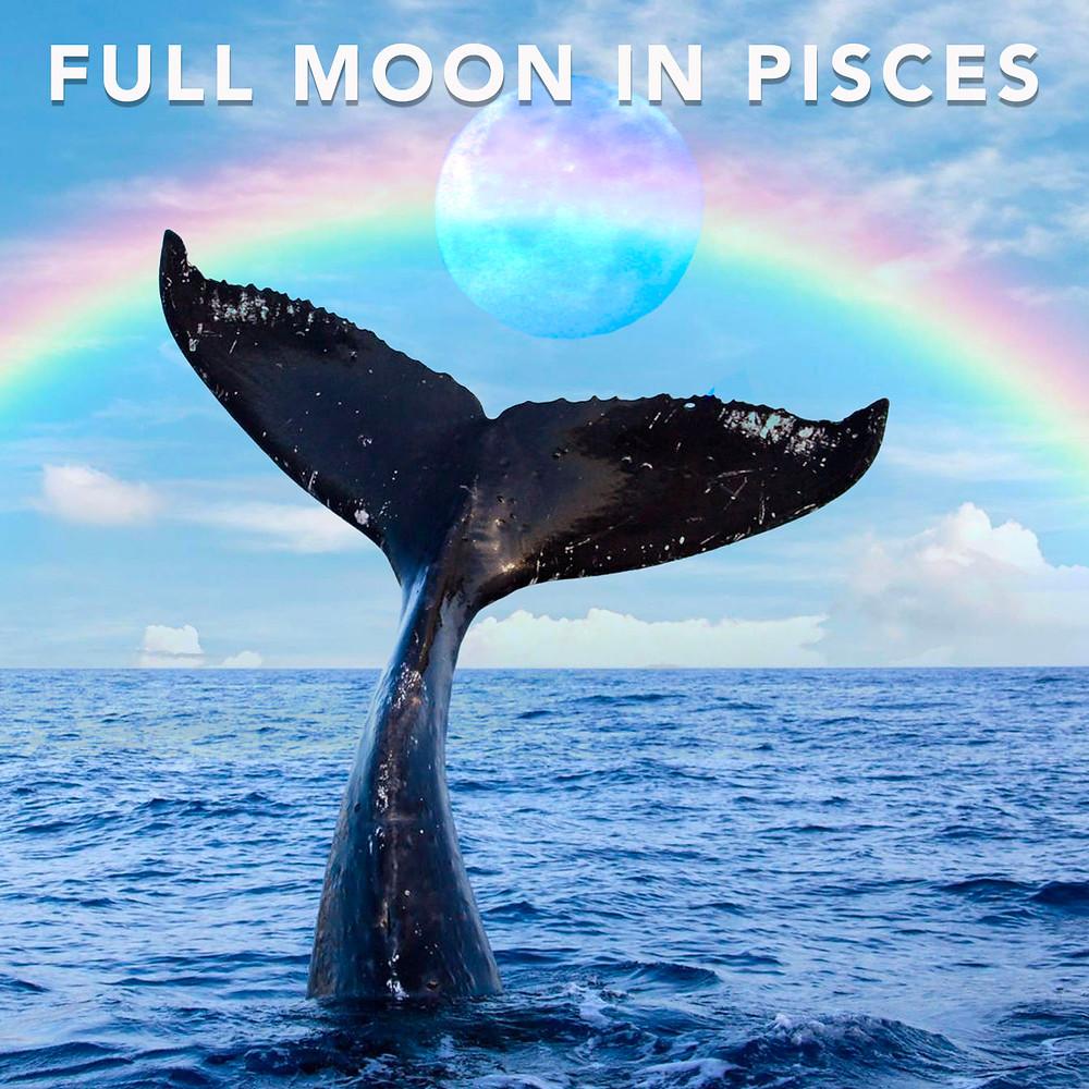 Full Moon in Pisces 2019 - Energetic Principles
