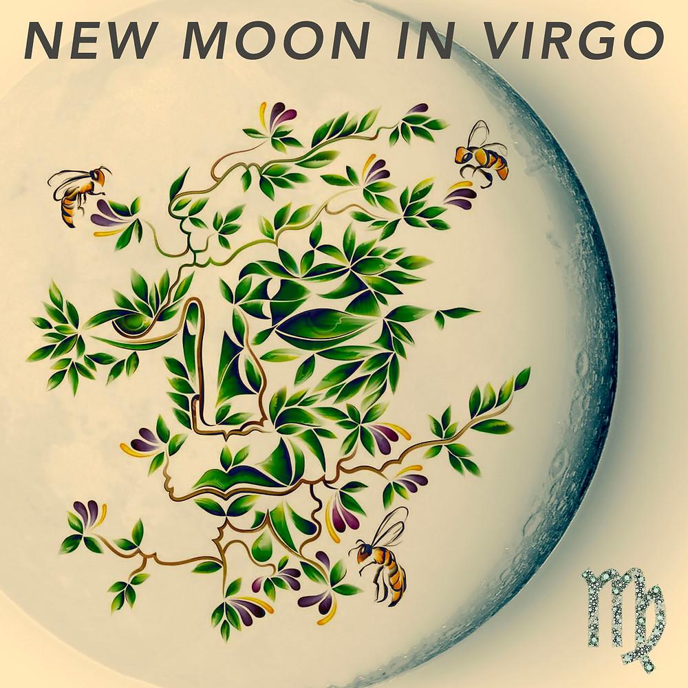 New Moon in Virgo 2019 - Energetic Principles