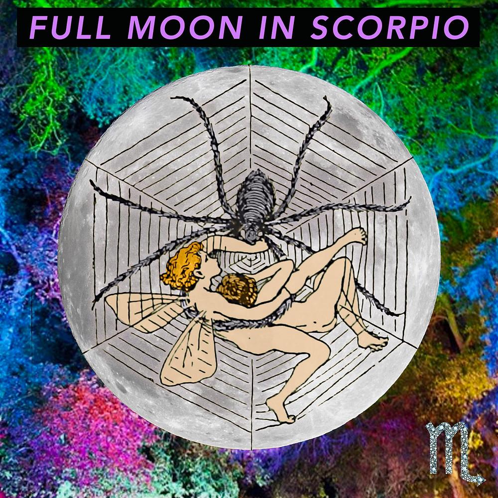 Full Moon in Scorpio 2019 - Energetic Principles