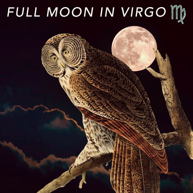 Full Moon in Virgo - From Futility To Gain 🍯