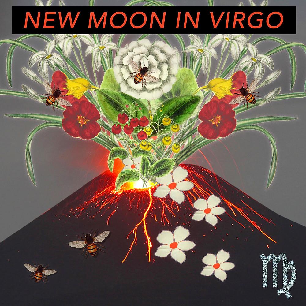 New Moon in Virgo 2018 - Energetic Principles