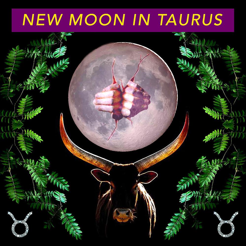 New Moon in Taurus May 2018 - Energetic Principles