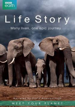 BBC Earth Life Story