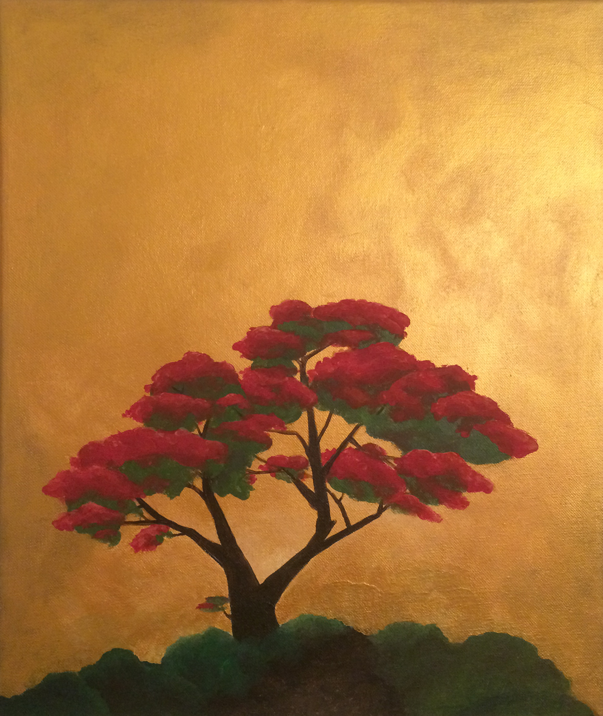 Euphorbia pulcherrima Gold