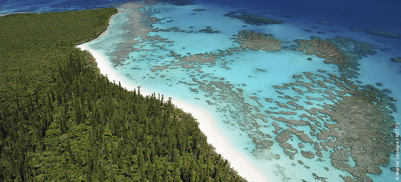 New Caledonia Package deals