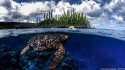 Mare © Pauline Masse NCTPS