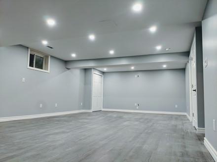 Basement Renovation