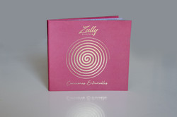 CD_zully
