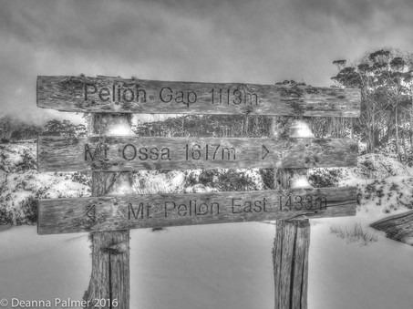 Cradle Mt Huts Walk Tassie
