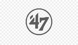 EBSM 47 Brand Grey Transparent Logo