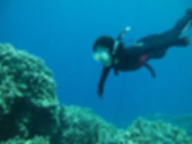 Freediving Classes with Everblue Freediving
