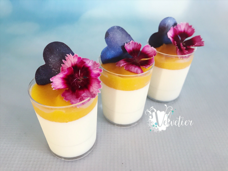 vanilla panna cotta with mango coulis verrings with edible flowers by velvetier brisbane dessert sho