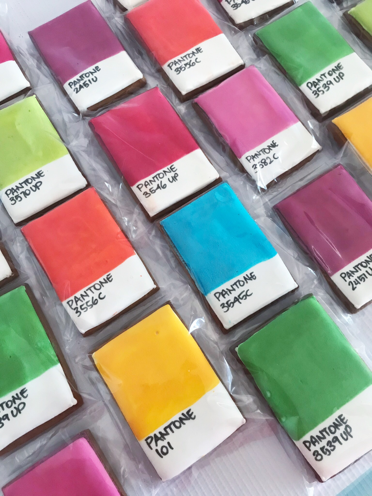 Pantone cookies for corporate launch event by velvetier brisbane cookies