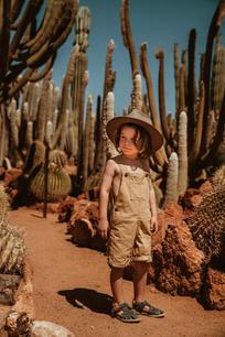 Luke cactus-2.jpg
