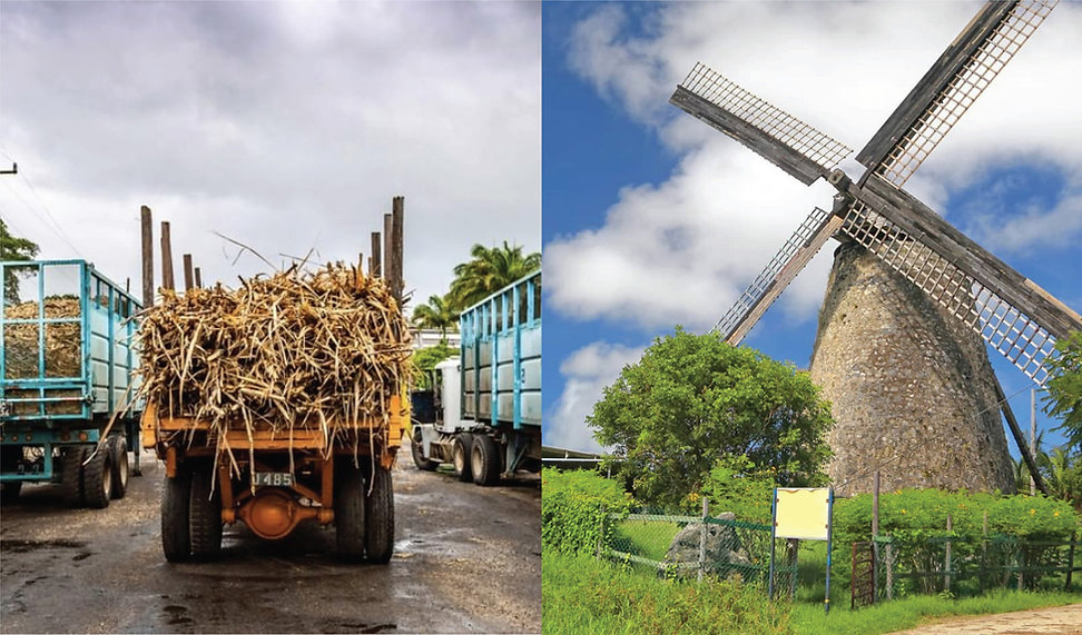 Barbados sugar mill