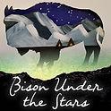 Bison Under the Stars.jpg