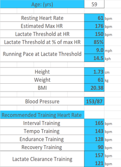 Lactate Training Zones.png