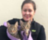 Cats at mobile clinic Lompoc December 20