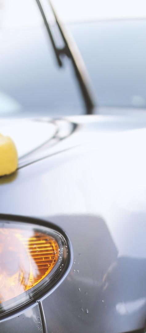 Car Waxing