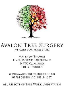 Avalon Tree Surgery.jpg