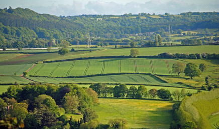 Rudhall Valley in May