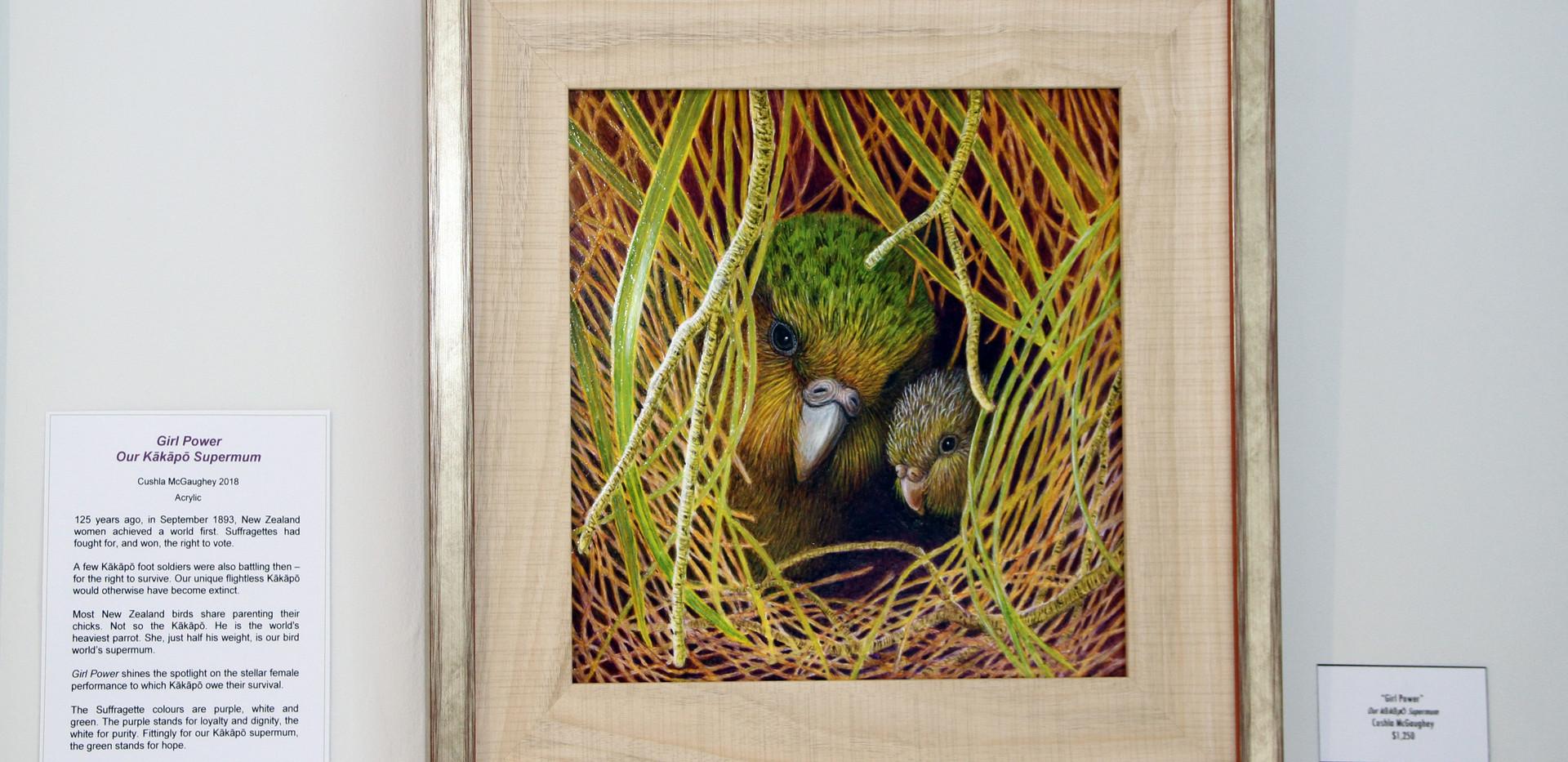 'Girl Power - Our Kakapo Supermum' Cushla McGaughey