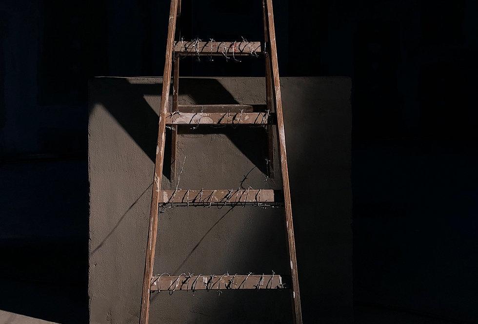 """""""97cm Ladder"""""""