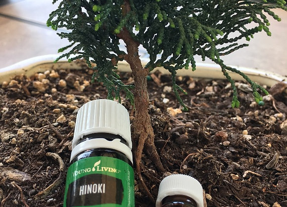 Hinoki Essential oil replenish vials