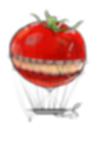 elements-globe-tomato2_edited.png