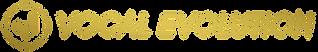 Vocal Evolution Logo 24K Long Transparen