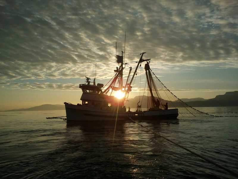Seiner in the Sunset