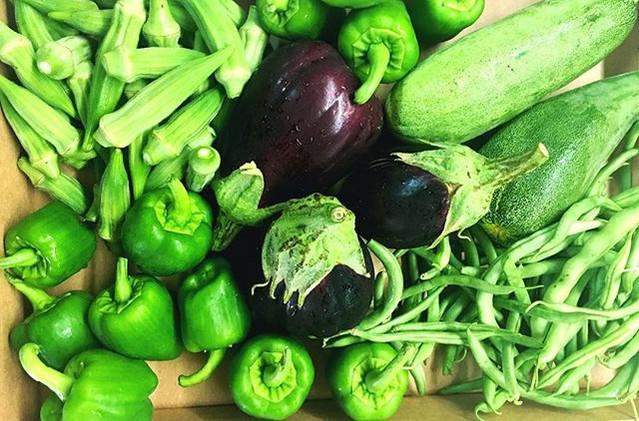 If you think bringing us fresh produce f