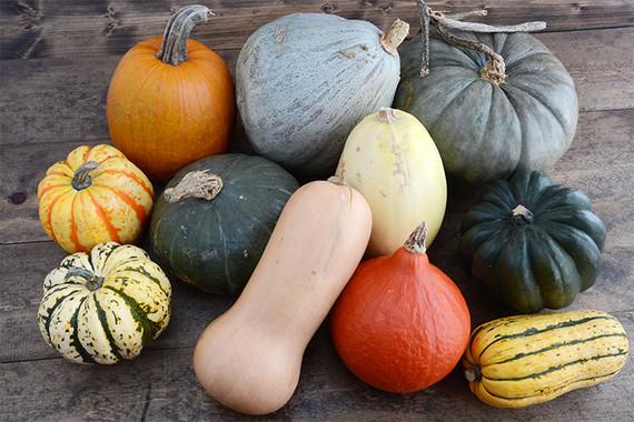 Fall squash.jpg