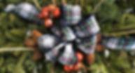 IMG_2123 christmas 3.jpg