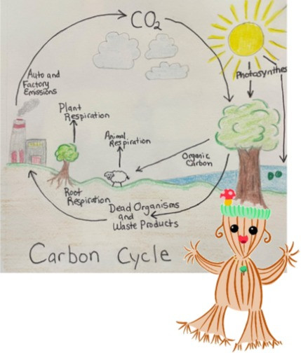 diagram showing why carbon cycle is important! Featuring our Climate Change Teach Ms. Myco Rhiza. Ms Myco Rhiza presents this as evidence of climate change