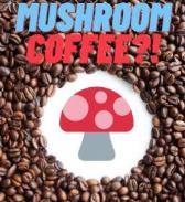 Oh Come on! Mushroom Coffee?