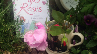 Coming up Roses by Rachael Lucas : Review