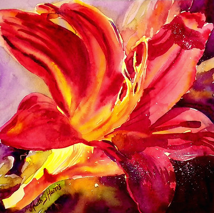 Deep Red Day Lily original watercolour painting