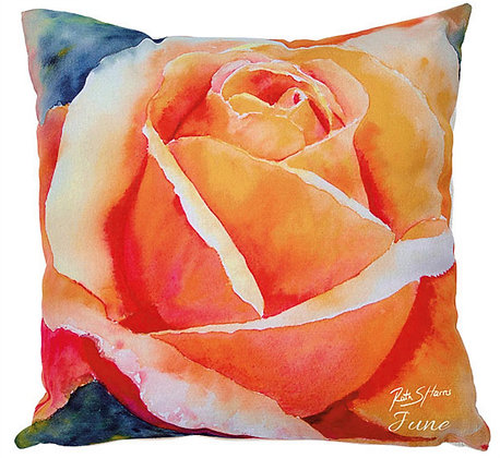 Apricot Rose - June flower of the month cushion