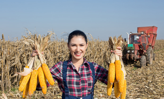 Young happy girl showing harvested corn
