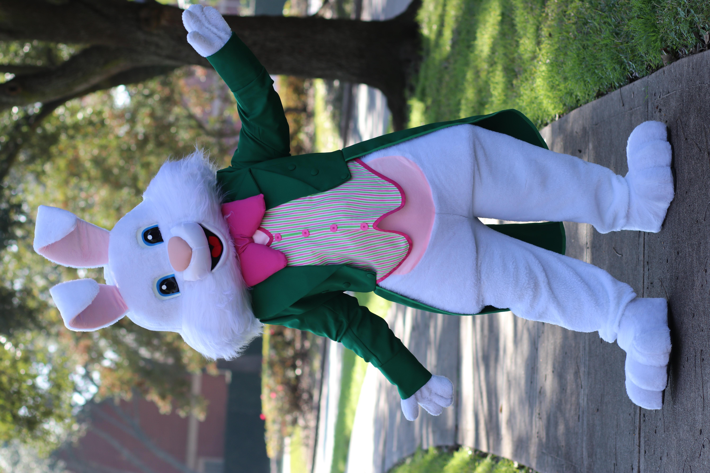 Green Bunny8