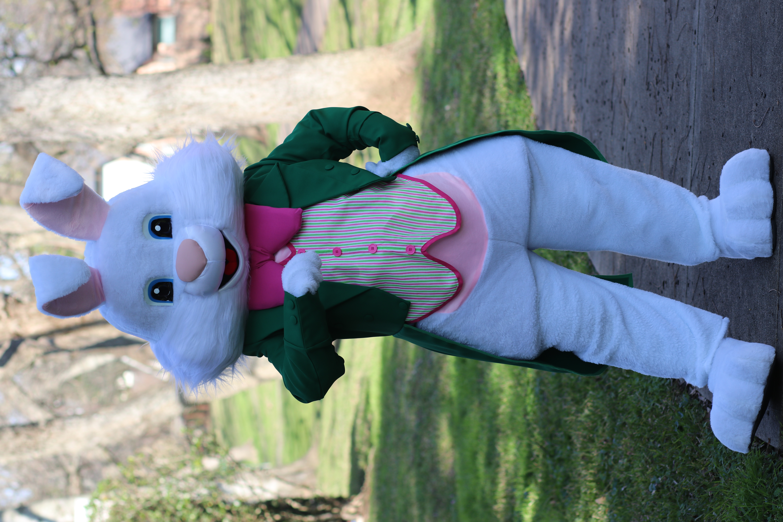 Green Bunny4