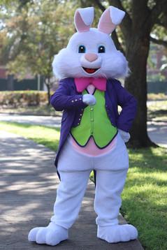 Purple Bunny6.JPG