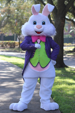Purple Bunny5