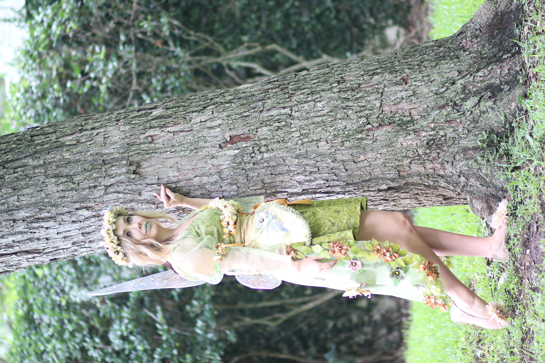 Woodland Fairy6