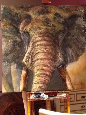 femmelle elephant 100-100.jpg