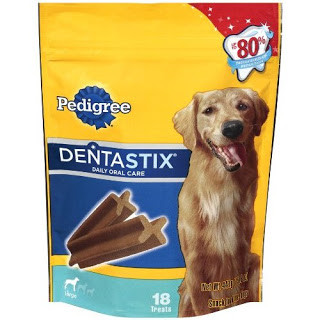 February is Pet Dental Health Awareness Month