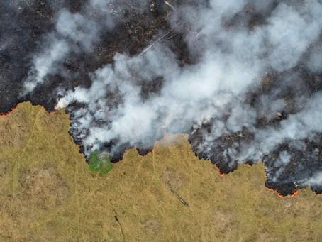 L'Amazonie dévastée par les flammes